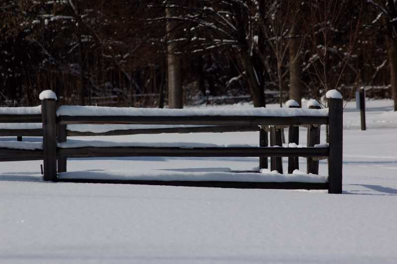 Split rail fence covered in snow