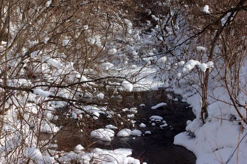 Snow scene at the creek