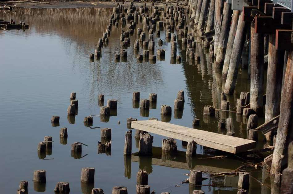Bridge pilings
