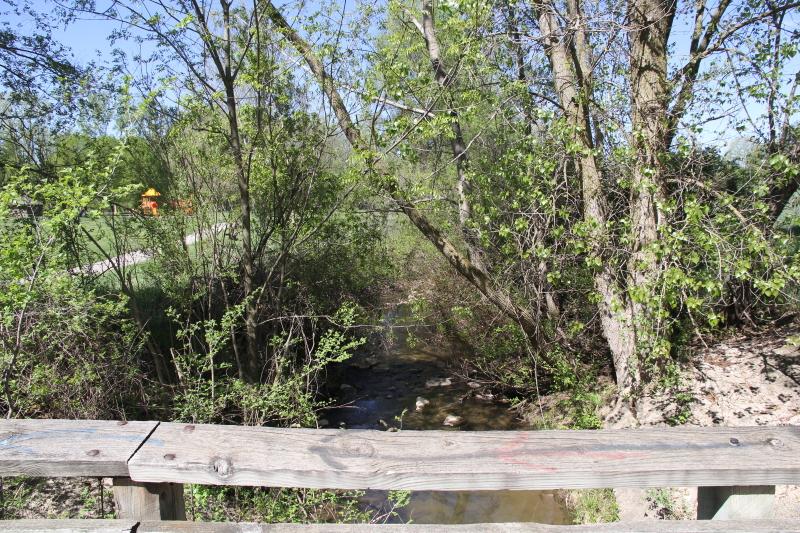 The creek in Creekside park