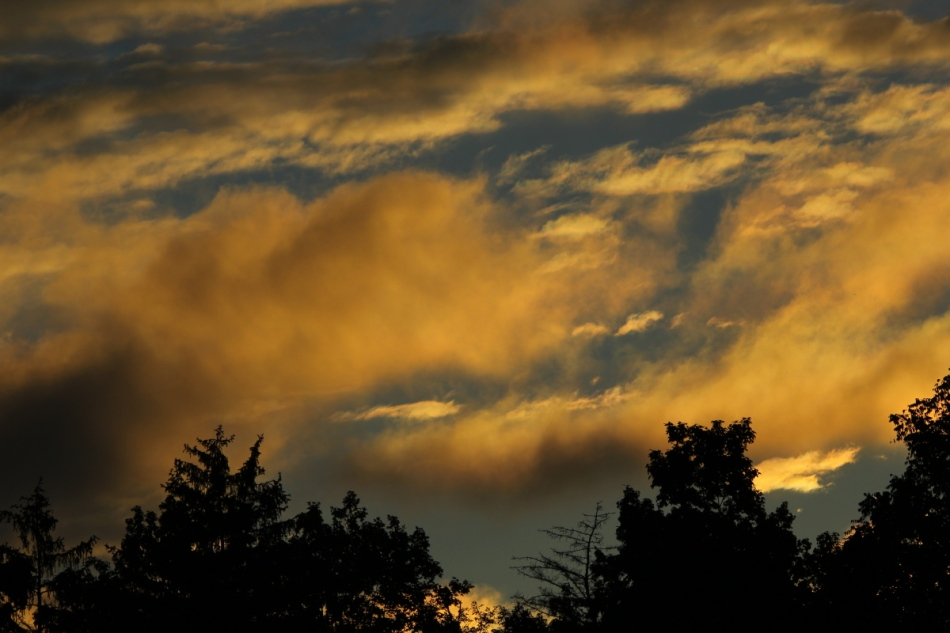 Striking sunrise