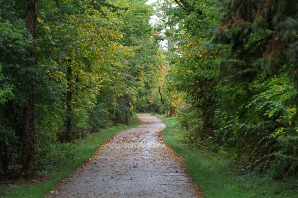 Early autumn trail