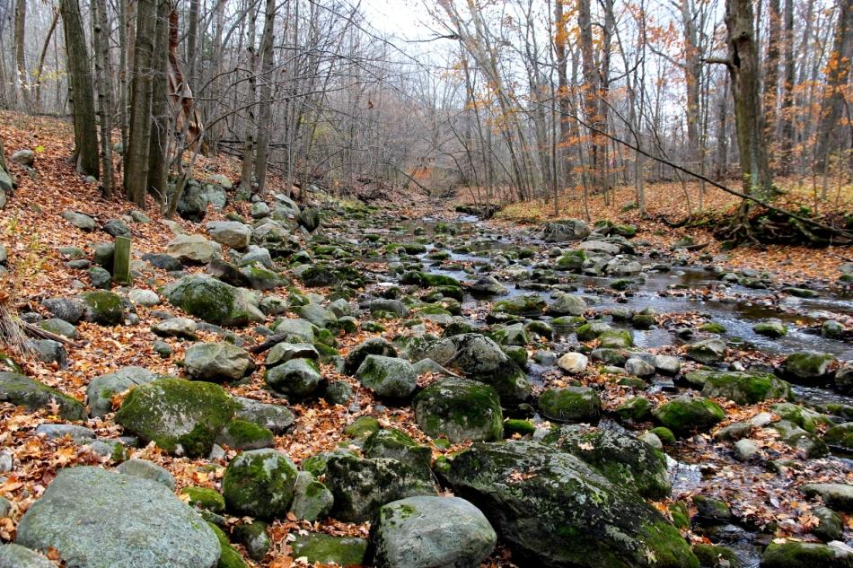 Sessions creek