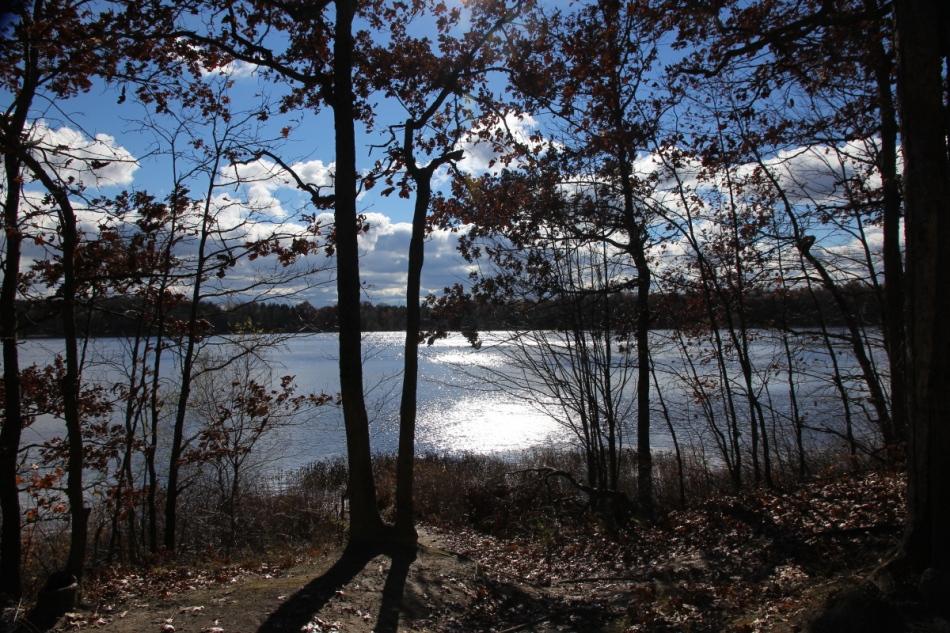 Pickerel Lake in the sun