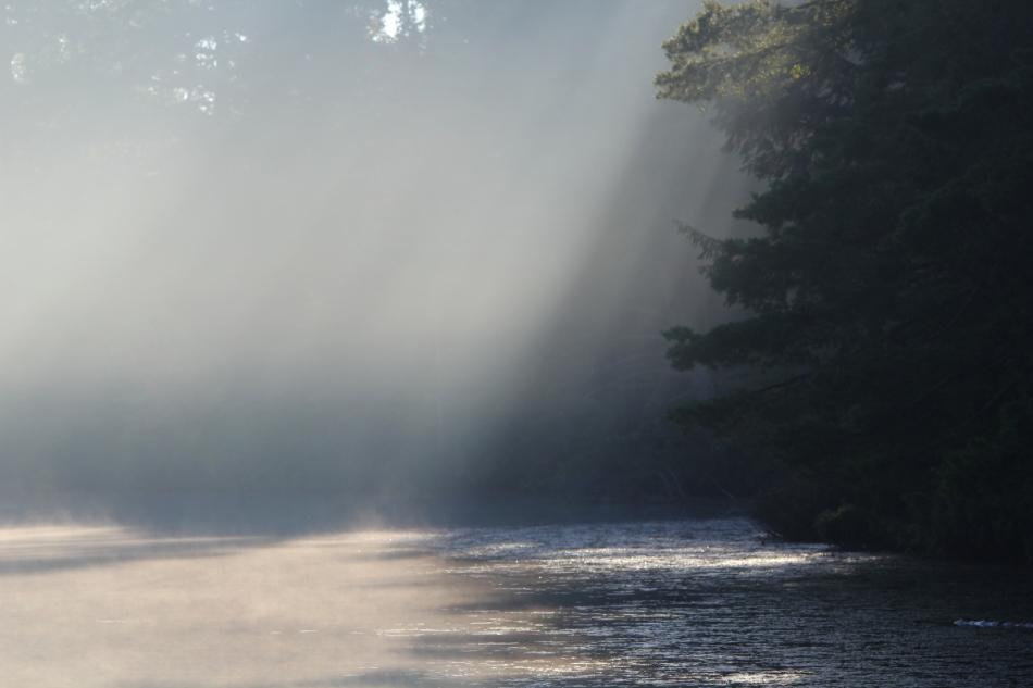 Foggy morning on Emily's Lake