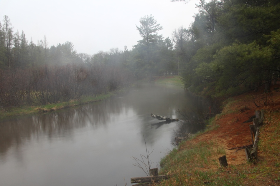 Misty morning at Goose Creek campground