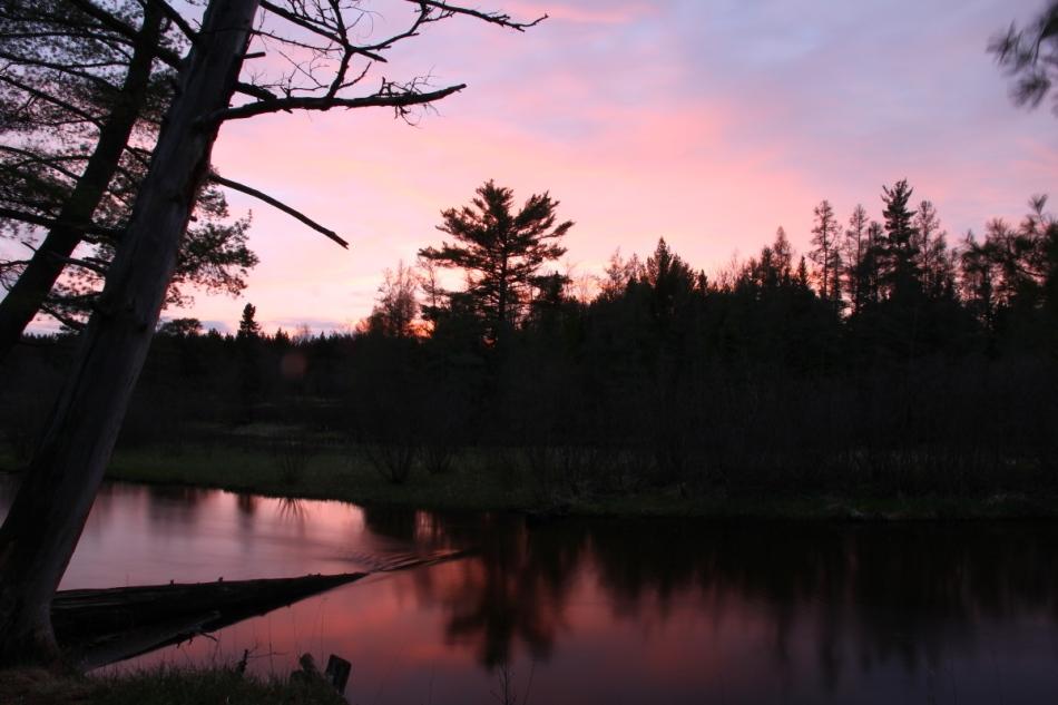 Evening at Goose Creek campground