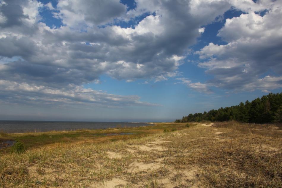 Lake Huron shoreline near Ossineke, Michigan