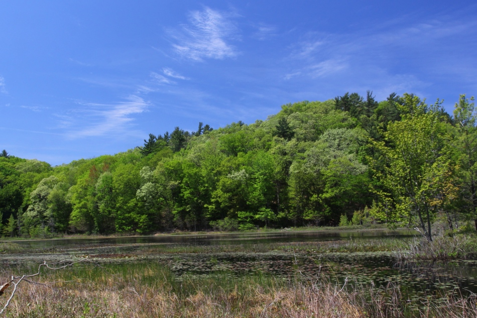 Lost Lake, Muskegon State Park