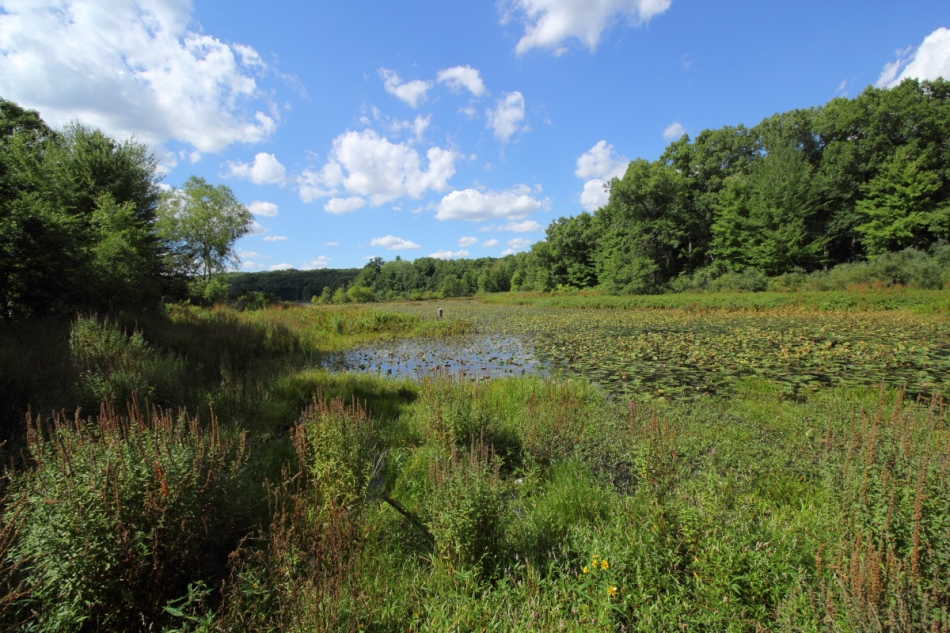Pickerel Lake, non-HDR