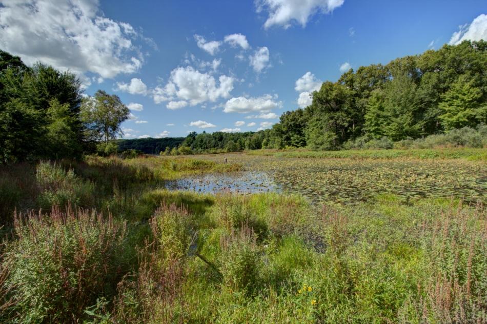 Pickerel Lake, HDR