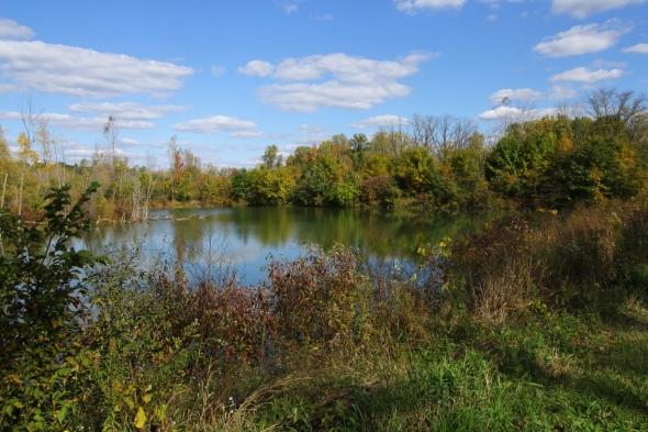 Lake at Milennium Park