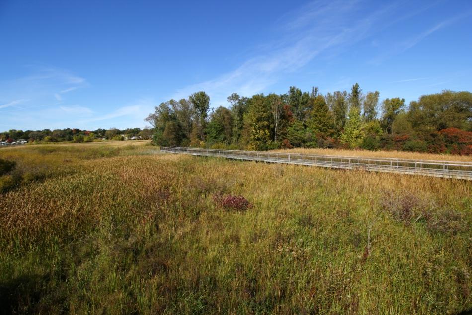 Muskegon Lake Nature Preserve