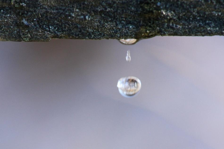 Water drop in midair