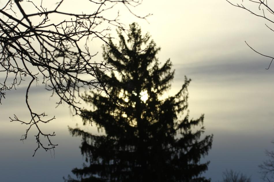 Dreary sunrise