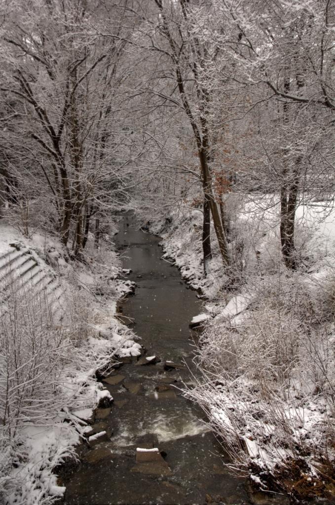 Creek scene, HDR version