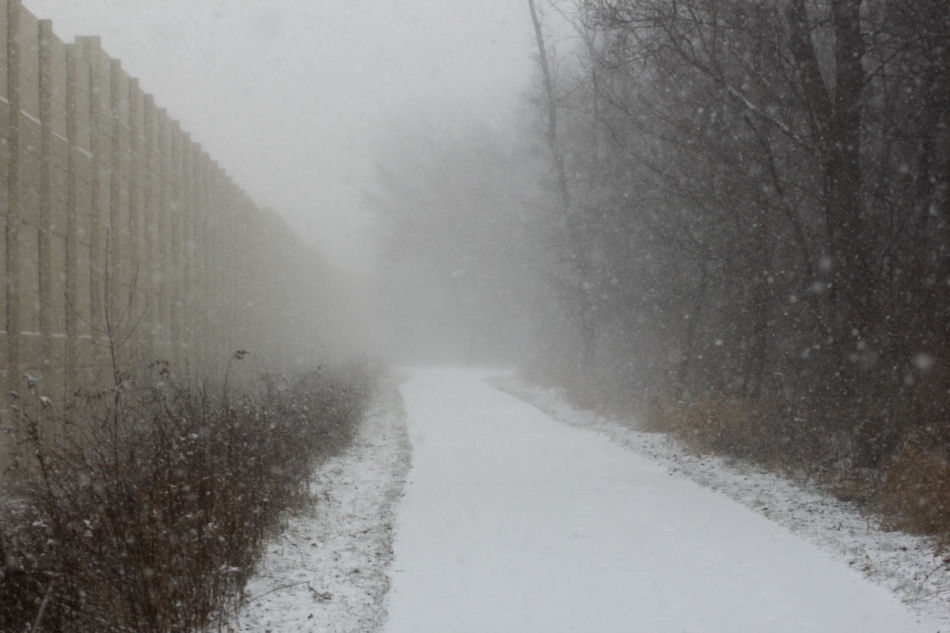 Snow, fog, wind, no light