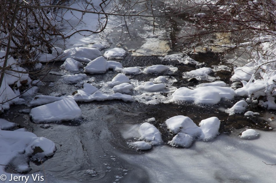 Almost frozen creek