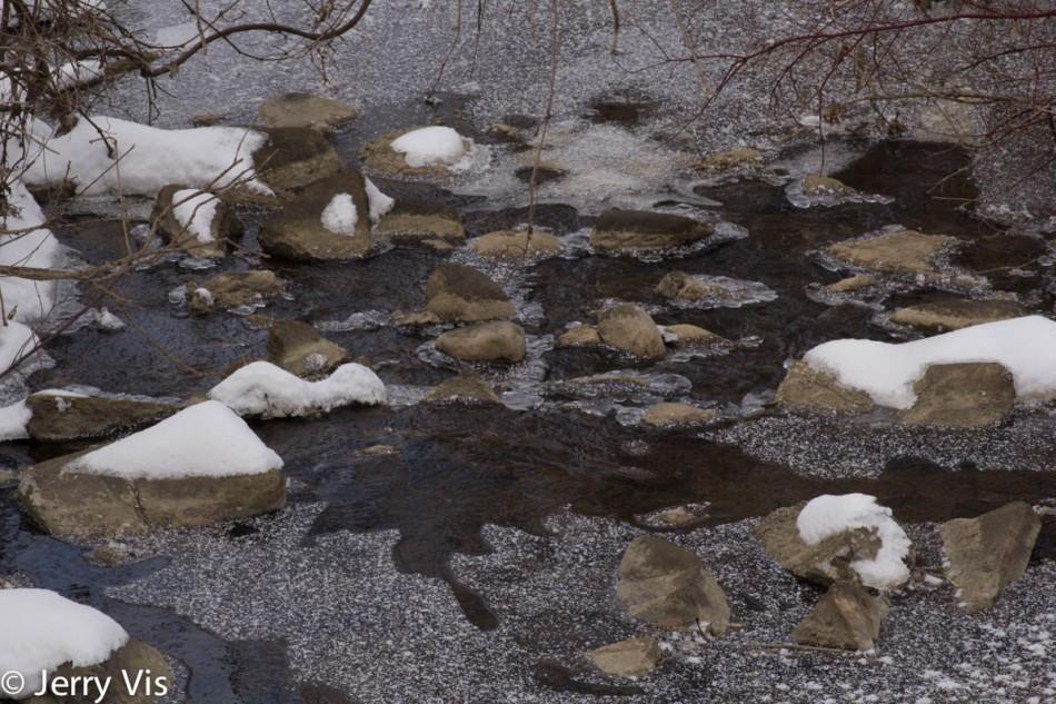 Creek scene before