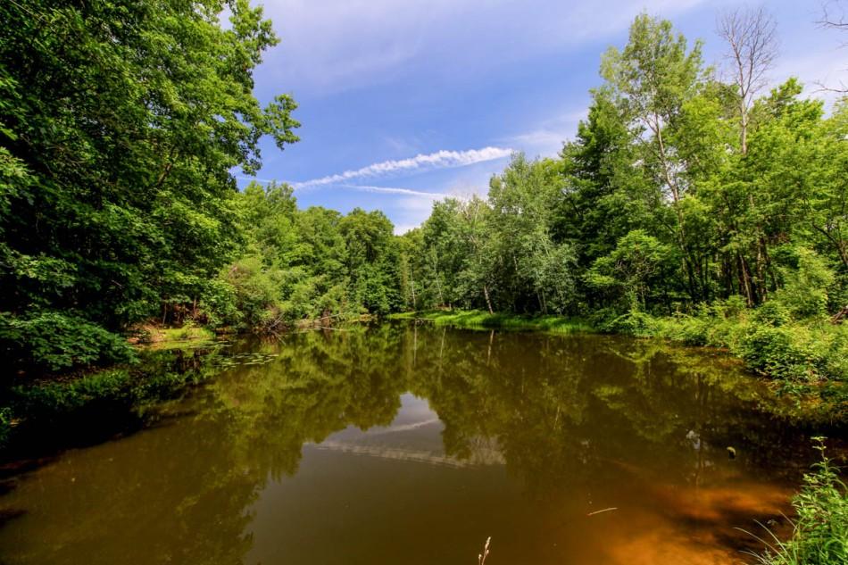 Un-name pond, Pickerel Lake Nature Preserve