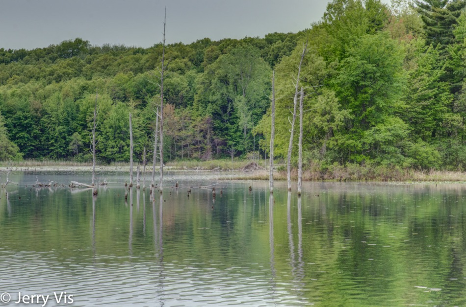 Pickerel Lake in HDR