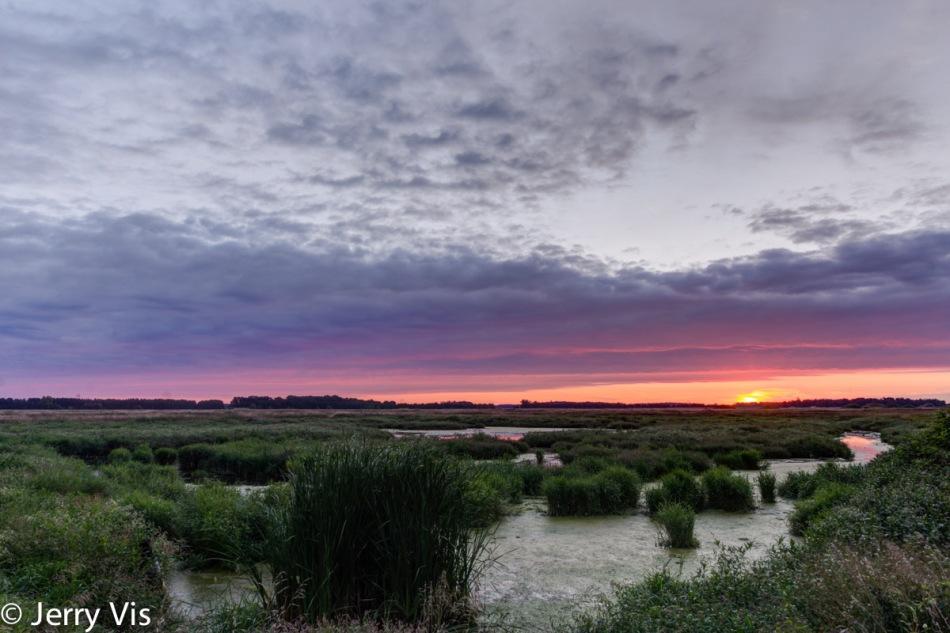 Sunrise over my favorite marsh