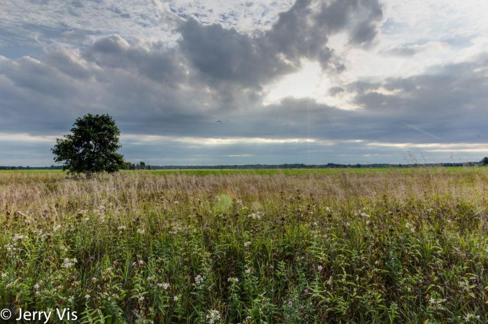 Cloudscape over a farm field