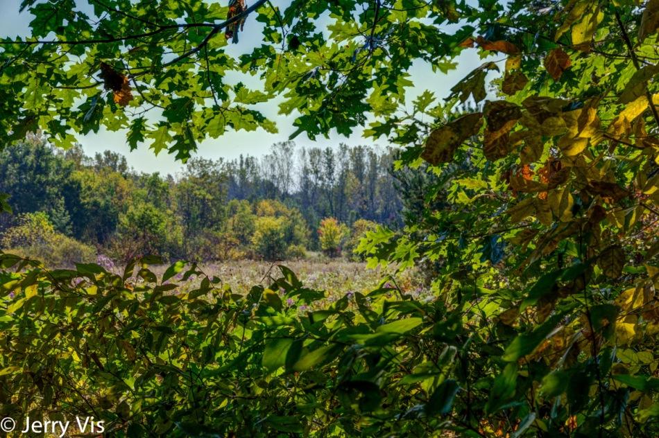 Creekside Park in the sun 2