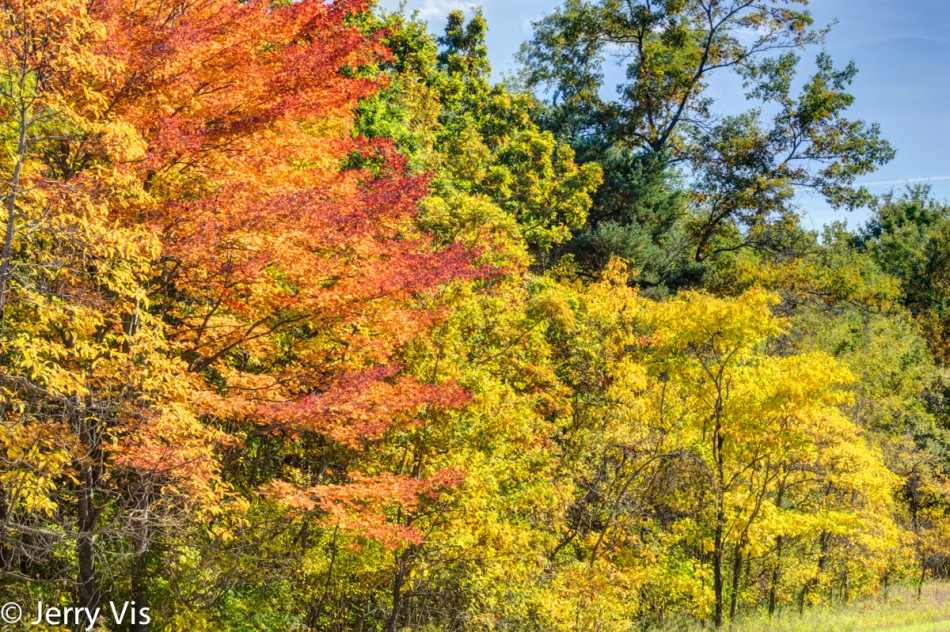 Fall colors in the Muskegon State Game area