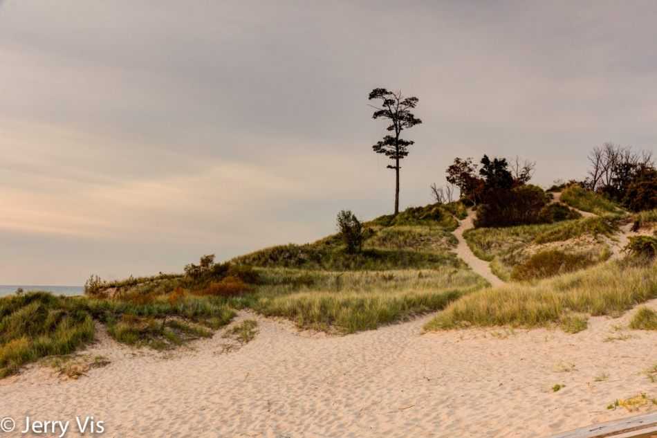 Dune overlooking the Duck Lake channel