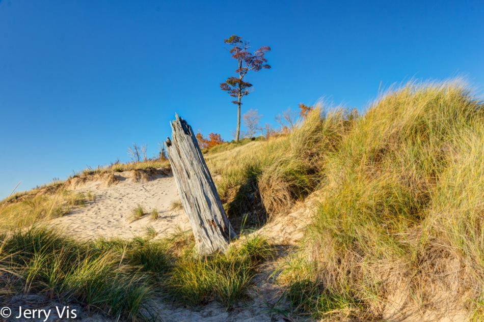 The dunes at Duck Lake