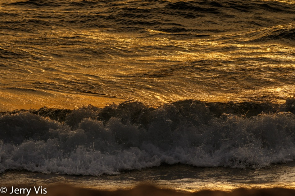 Waves at sunset 2