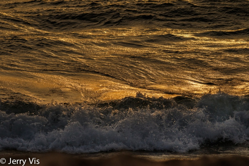Waves at sunset 3