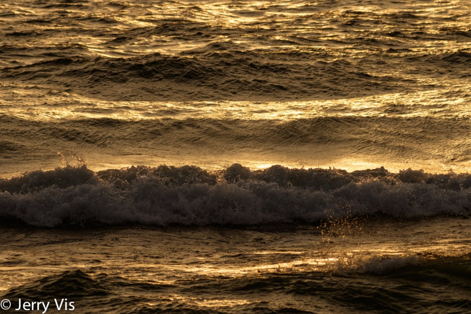 Waves at sunset 1