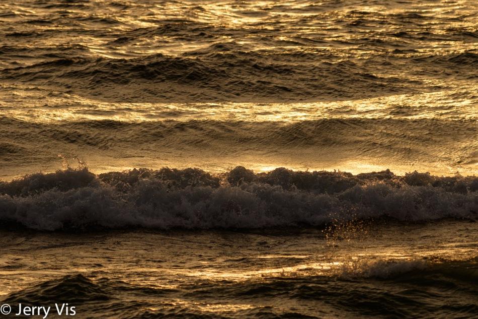 Waves at sunset 1