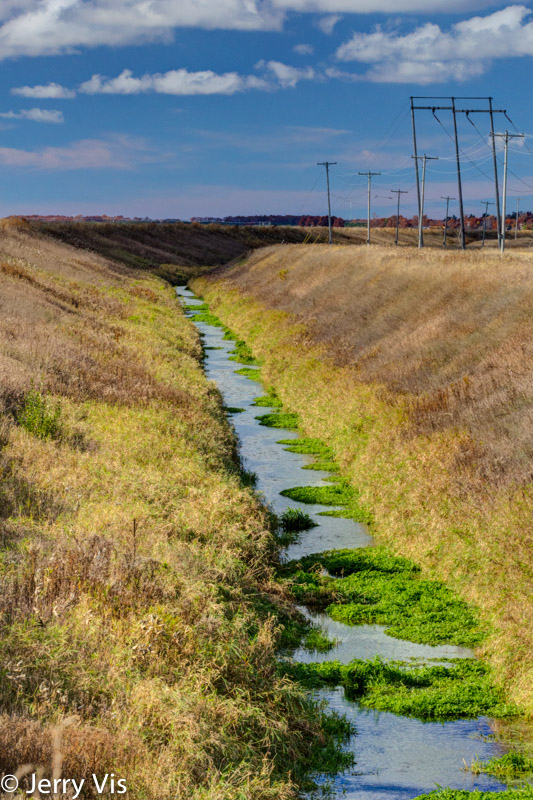A drainage ditch near Muskegon