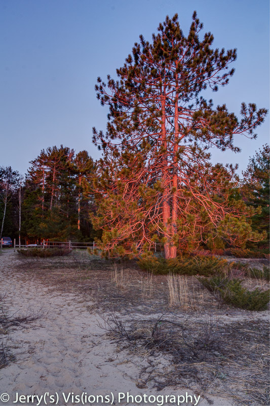 Dawn at Ossineke State Forest campground